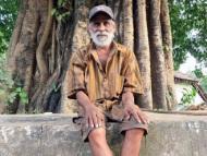 Ind a strom. Agonda, Goa. Indie