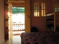 Pohled z mého pokoje v Arambolu. Goa, Indie