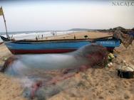 Rybářská loď na pláži v Calangute, Goa v Indii