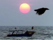 Západ slunce na pláži v Calangute, Goa - Indie