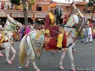 Koně na slavnosti. Jaipur, Rajasthan, Indie