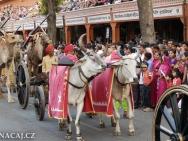 Oslavy. Jaipur, Rajasthan, Indie