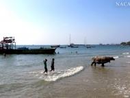 Betonová kráva v moři. Sihanoukville, Kambodža