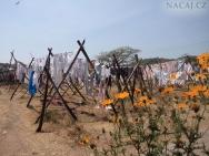 Sušení prádla za prádelnou. Kochi, Kerala, Indie