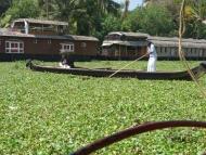 BackWaters - Allepey, Kerala, Indie