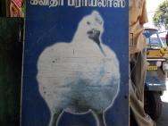 Kuře na trhu v Munnaru. Kerala, Indie