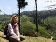 Na výletě po plantážích. Munnar, Kerala - Indie