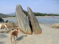 Skála na pláži v Palolem, Goa. Indie