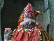 Bůžek. Pushkar, Rajastan, Indie