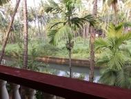 apartment-balkon-Agonda-Goa-Indie