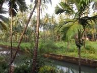 terasa-ubytováni-hotel-Agonda,Goa