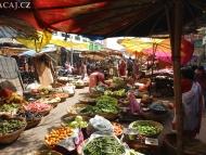 Trh. Udaipur, Rajasthan, IIndie