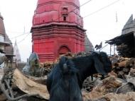 Koza a dřevo na kremace. Varanasi, Indie