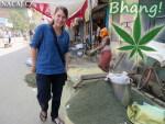 Bhang ve Varanasi - výroba z marihuany